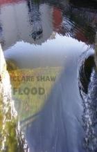 Clare Shaw Flood