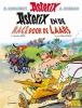 Ferri Jean-yves & Didier  Conrad, Asterix 37