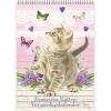 , Franciens Katten `Kittens`
