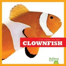 Meister, Cari Clown Fish