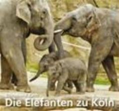 Rath, Christiane Die Elefanten zu Köln