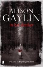 Alison  Gaylin In het donker