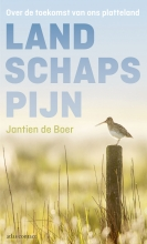 Jantien de Boer , Landschapspijn