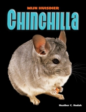 Heather C.  Hudak Chinchilla
