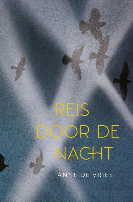Anne de Vries,Reis door de nacht
