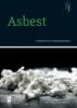 Jelle  Bekke Tim  Segers  Peter  Huijbregts,Asbest, toezicht en handhaving