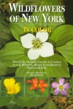 Chapman, William K. Wildflowers of New York in Color