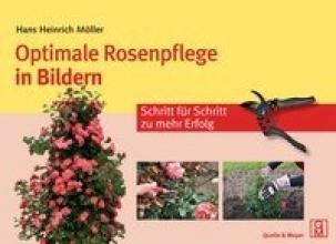 Möller, Hans Heinrich Optimale Rosenpflege in Bildern