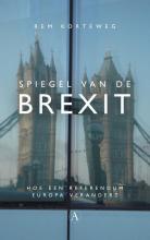Rem Korteweg , Spiegel van de Brexit