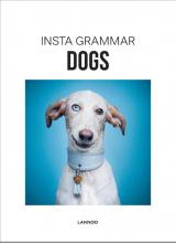 Irene Schampaert , Dogs