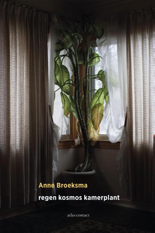 Anne Broeksma,regen kosmos kamerplant