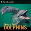 Simon, Seymour,Dolphins