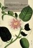,Alexander von Humboldt y la actualidad de su pensamiento en torno a la naturaleza.  Alexander von Humboldt und die G?ltigkeit seiner Ansichten der Natur