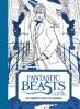 ,<b>Fantastic Beasts and Where to Find Them: 20 kaarten om in te kleuren</b>