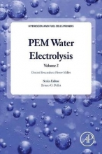 Bessarabov, Dmitri PEM Water Electrolysis