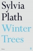 Plath Sylvia, Winter Trees