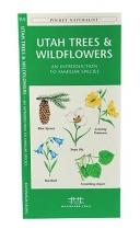 Kavanagh, James Utah Trees & Wildflowers
