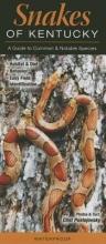 Pustejovsky, Clint Snakes of Kentucky