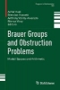 ,Brauer Groups and Obstruction Problems
