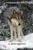 Marina  Eggermont,Living amongst wolfdogs