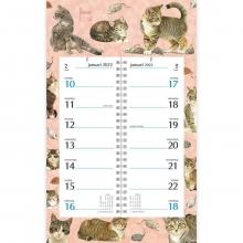 , Omslag kalender week 2022 franciens katten tabby cats