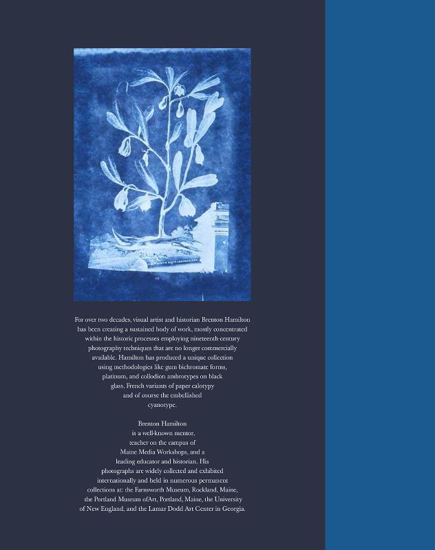 Brenton Hamilton,A Blue Idyll