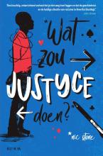 Nic Stone , Wat zou Justyce doen?