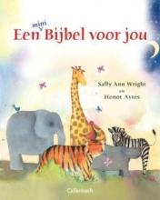 Sally Ann  Wright Een bijbel voor jou Mini -editie