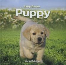 Michael  Teitelbaum Puppy