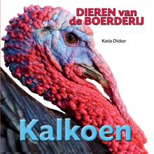 Katie  Dicker Kalkoen