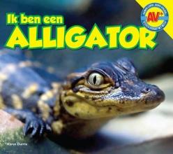 Karen Durrie , Alligator