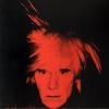 Muir Greg & Y.  Dziewior, Andy Warhol