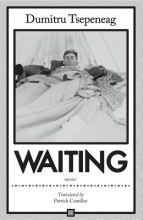 Tsepeneag, Dumitru Waiting