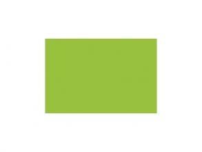 , etalagekarton Folia 48x68cm 380gr pak a 10 vel fluorgroen