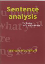 P.J. van der Voort P.L. Koning, Sentence analysis