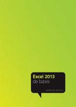 Ward van der Put , Excel 2013