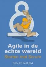 Derk-Jan de Grood , Agile in de echte wereld