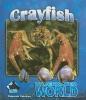 Coldiron, Deborah,Crayfish