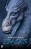 <b>Christopher Paolini</b>,Eragon