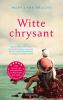 Mary Lynn  Bracht,Witte chrysant