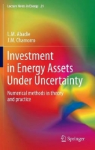 Abadie, L. M. Investment in Energy Assets Under Uncertainty