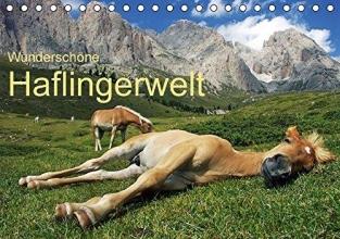 Rucker, Michael Wunderschöne Haflingerwelt (Tischkalender 2016 DIN A5 quer)