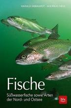 Gebhardt, Harald Fische