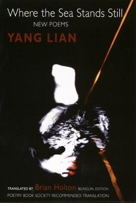 Yang Lian,   Brian Holton,Where the Sea Stands Still