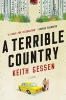 Keith Gessen, A Terrible Country