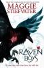 Stiefvater, Maggie, Raven Boys