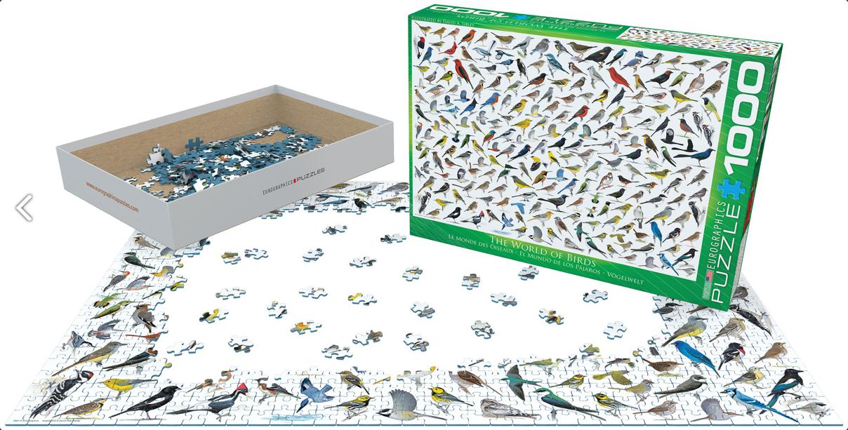 Eur-6000-0821,Puzzle eurograpics the world of birds 1000 stukjes