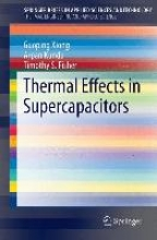 Xiong, Guoping Thermal Effects in Supercapacitors