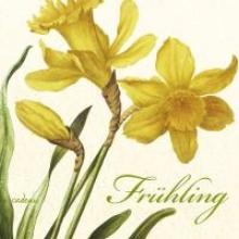 Frhling