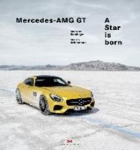Markus Bolsinger,   Marco Brinkmann Mercedes-AMG GT